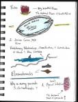 SciBoot Sketchnotes_Page_17