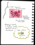 SciBoot Sketchnotes_Page_18