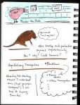 SciBoot Sketchnotes_Page_26