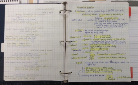 My highlighted, coffee-stained notebook from that year of hard study. Despite the years, I've never been able to throw it out.